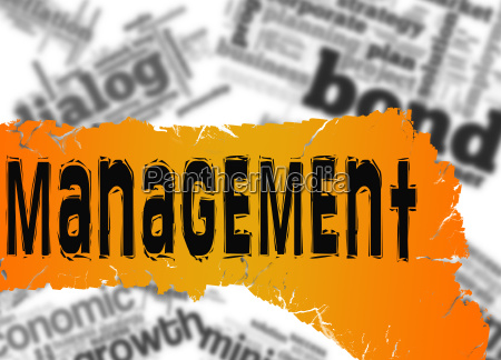 word cloud with management word on