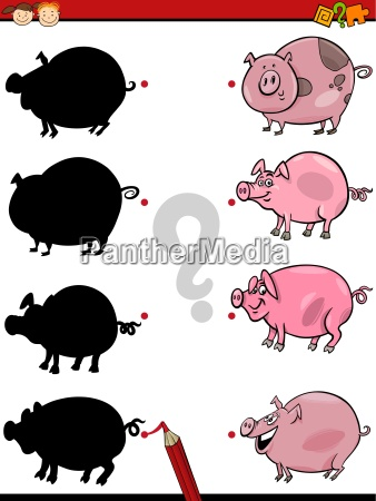 shadows task with pig