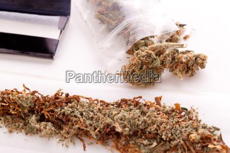 cannabis marihuana mit papier und joint
