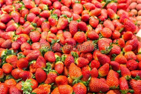 viele erdbeeren an einem marktstand