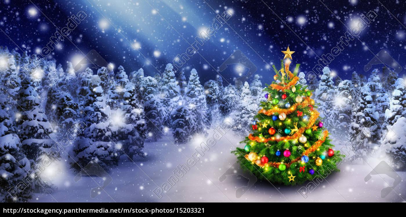 weihnachtsbaum im sch nen schnee lizenzfreies bild. Black Bedroom Furniture Sets. Home Design Ideas