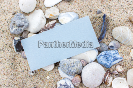 blue card with sea shells and