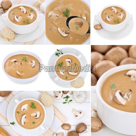 collage mushroom soup mushroom mushroom soup