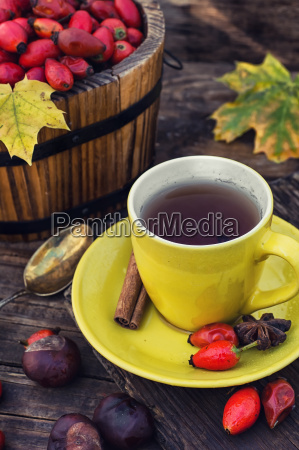 treatment with decoction of rose hips