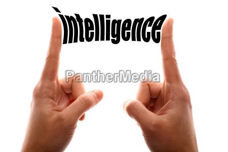 smaller intelligence