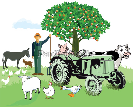farm animals with bauer