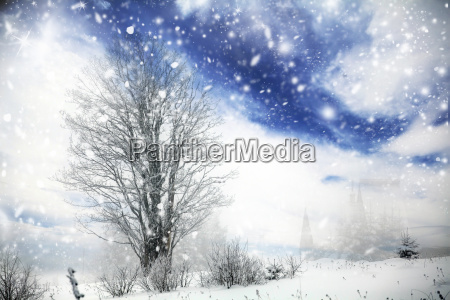 winter tree in the snowfall