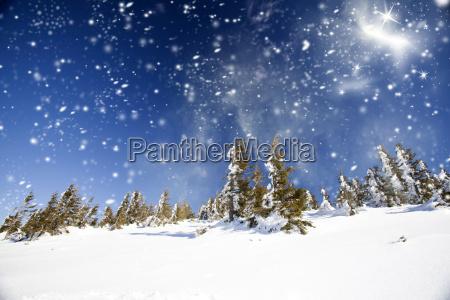 urlaub urlaubszeit ferien schneefall gedeckt weihnachtszeit