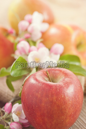 fresh organic apples on wooden table