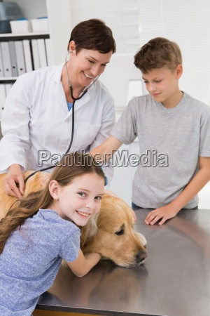 smiling vet examining a dog with