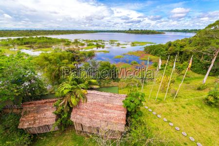 amazon jungle view