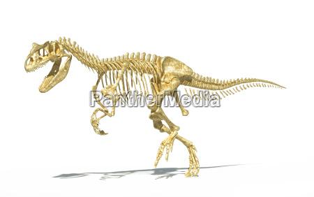 allosaurus skelett fotorealistische wissenschaftlich korrekt