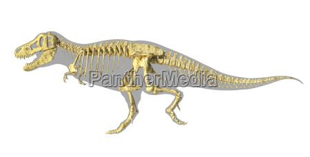 t rex dinosaurier fotorealistische voll skelett