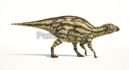 maiasaura dinosaurier junges kind fotorealistische darstellung
