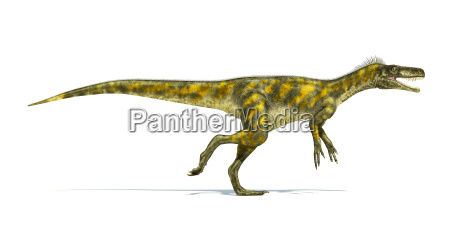 herrerasaurus dinosaurier fotorealistische darstellung seitenansicht