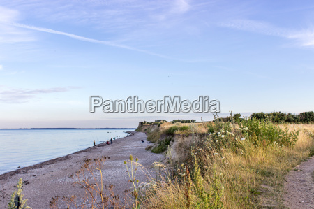 baltic landscape with beach field and