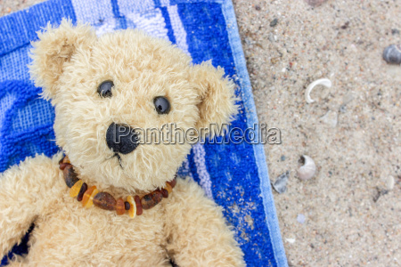 a teddy bear lies on a