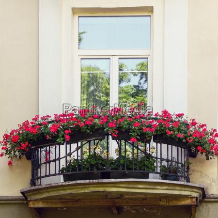 balkon mit roten blumen