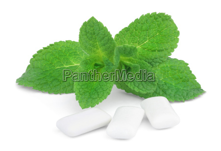 this is a sprig of mint