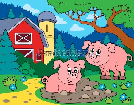 schwein thema bild 7