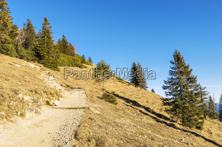 path in bavaria alps
