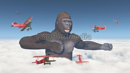 doppeldecker attackieren einen riesigen gorilla