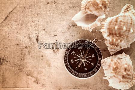 compass and sea shells