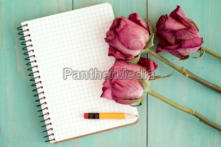 old roses and blank notebook