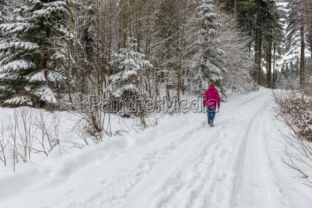 spaziergang in der winterlandschaft
