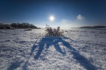 sonnenaufgang im schnee mit nebel und