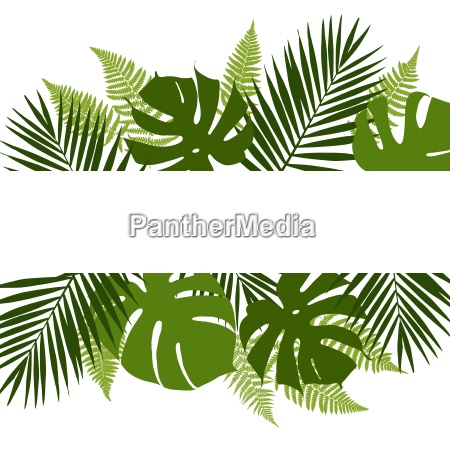 tropical leaves background with white banner