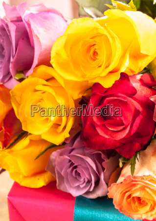 colorful background of fresh roses