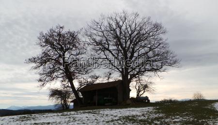 Stadel, scheune, Silhoutte, Gegenlicht, Scherenschnitt, Winter - 16046917