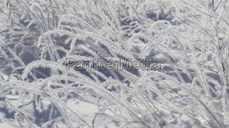 Winter, schnee, eis, Kristall, Schneekristalle, verschneit - 16046943