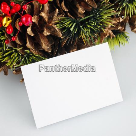 blatt baumblatt freisteller feiertag winter gruen