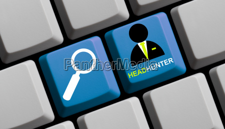 headhunter search online professionals