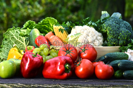 assorted raw organic vegetables in the