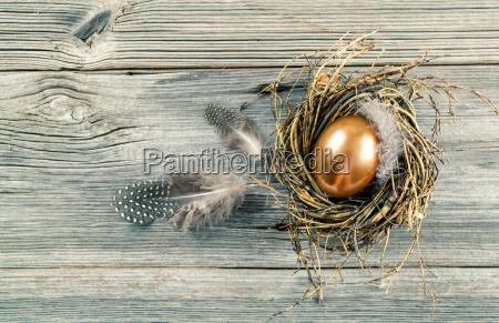 golden ei im nest auf holzuntergrund