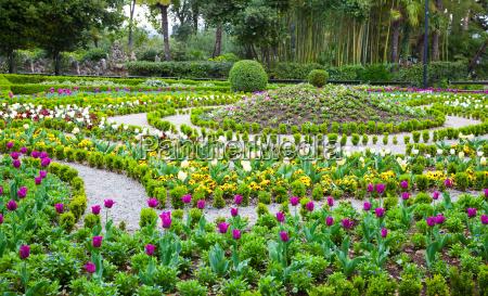 flower season in the park