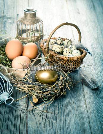 golden eier der huehner im nest