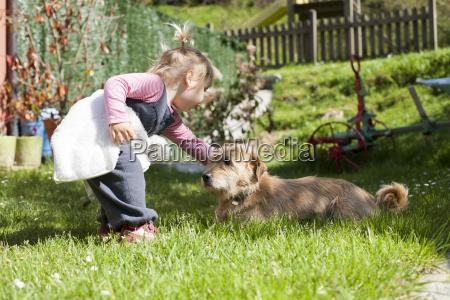 baby beruehren einen hund