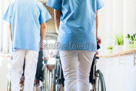 altenpfleger schieben senioren im rollstuhl durch