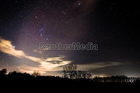 sternenhimmel und baeume