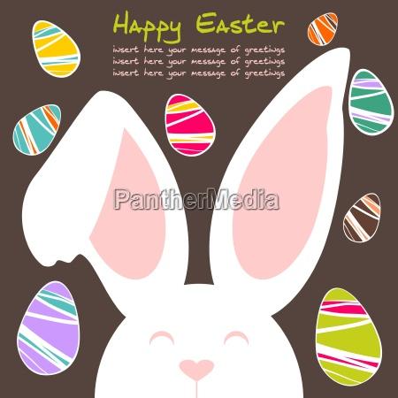 froehliche und freundliche farbige kaninchen