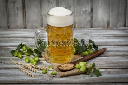 bier in einem bierkrug hopfen und