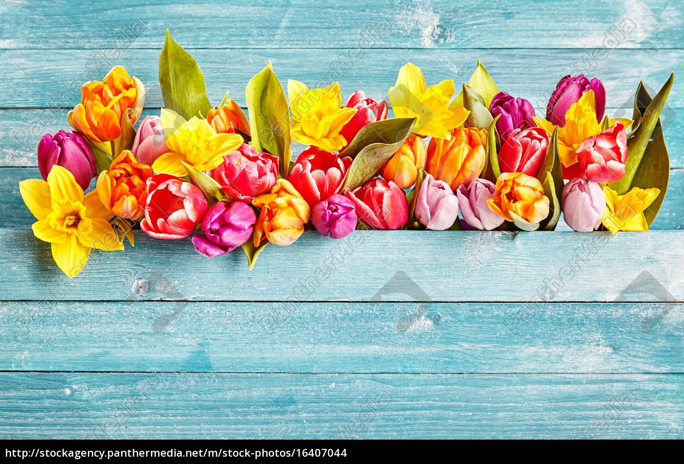 Spring Flowers Border With Copy Space Lizenzfreies Foto