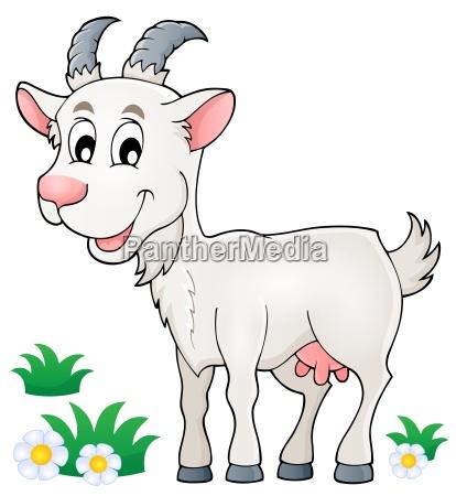 goat theme image 1