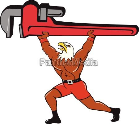 bald eagle klempner monkey wrench isoliert