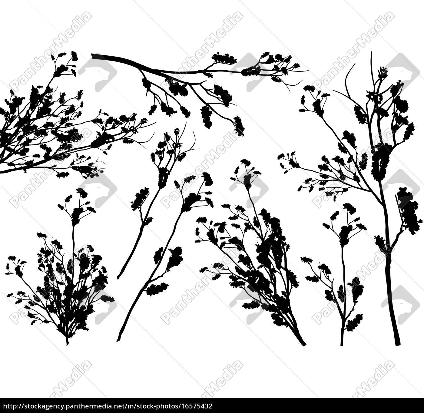 set, von, branch, silhouetten - 16575432