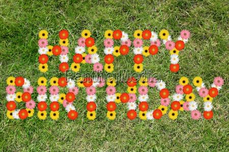 aniversario feliz cumpleanyos de la hierba